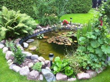 Teich - Wasser im Garten