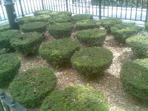 Gartenanlage-2
