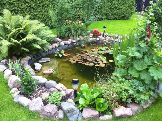 gartenteich bepflanzen – actof, Gartenarbeit ideen